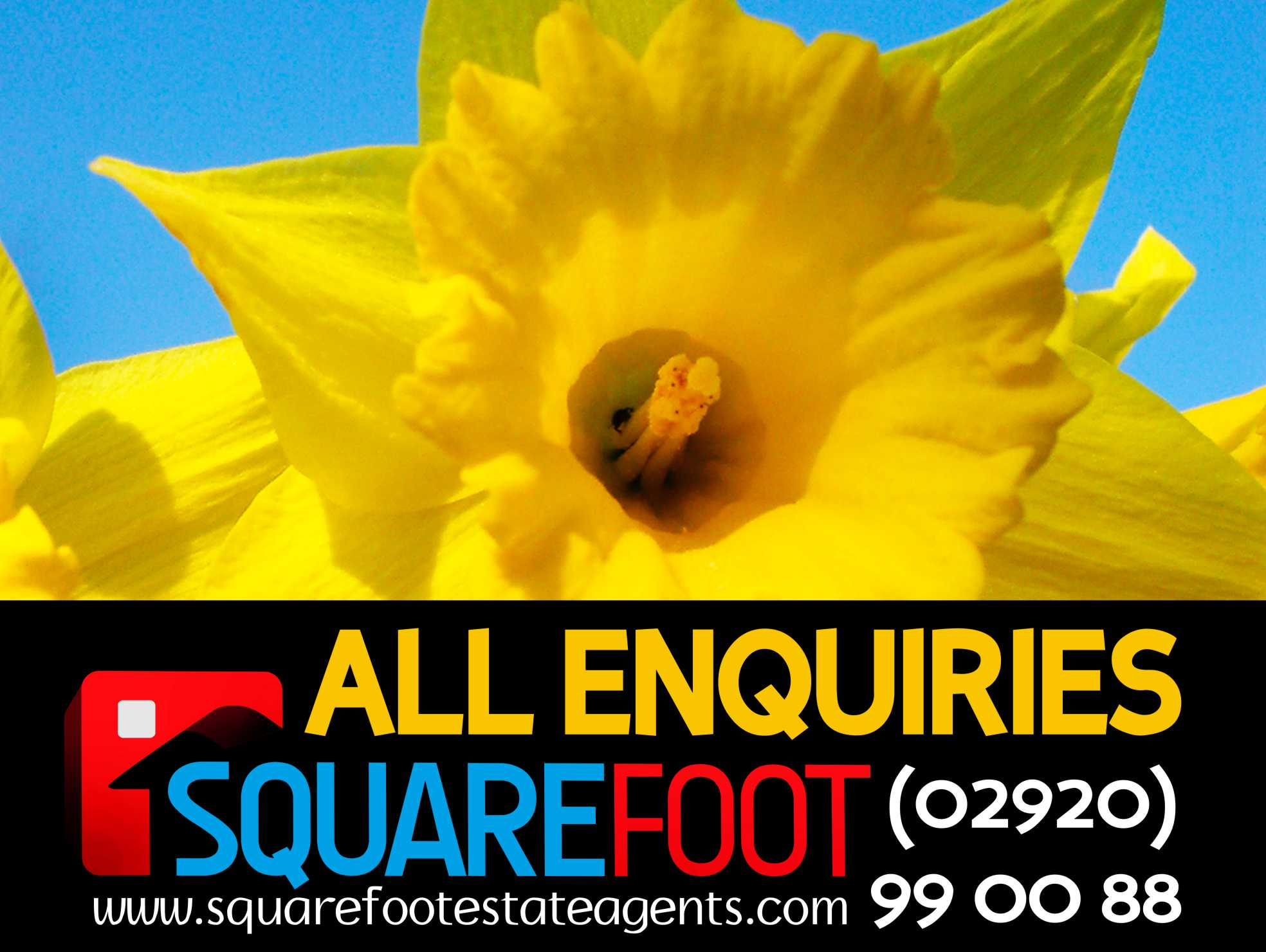 estateagentboardshop-squarefoot